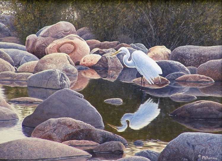 Denis Milhomme, Rocky Reflections